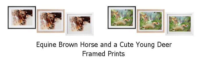 New Equine Horse and Young Deer Framed Prints