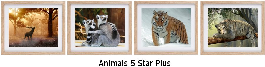 Animals 5 Star Plus Framed Prints
