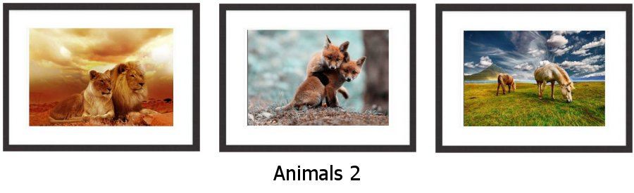 Animals 2 Framed Prints