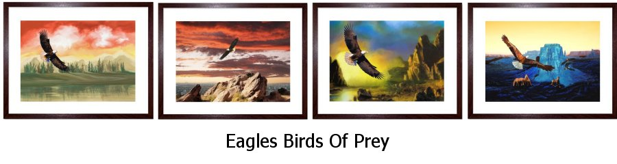 Eagles Framed Prints