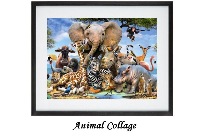 Animal Collager