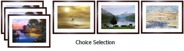 Choice Select