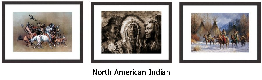 North American Indian Framed Prints