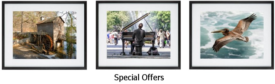 Special Offers Framed Prints