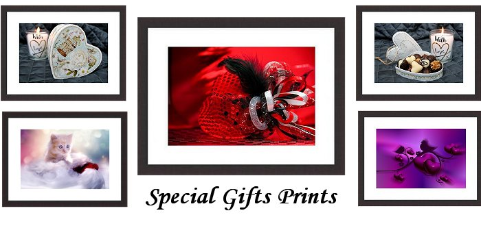 Special Gifts Framed Prints